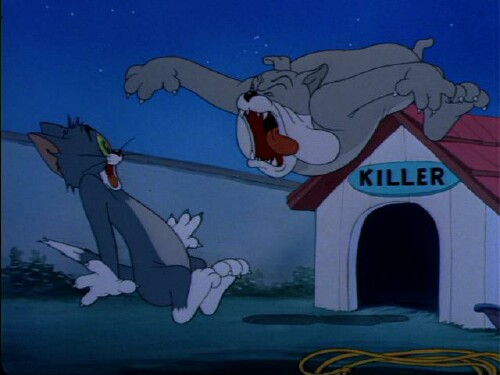 Tom and Jerry: In the Dog House