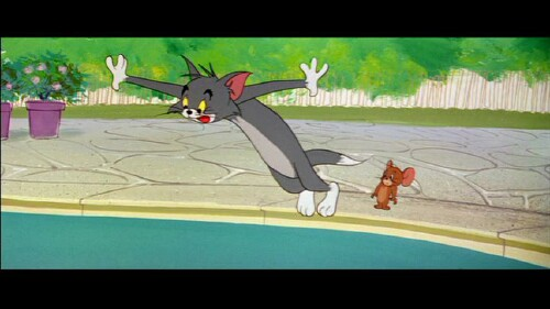 Tom and Jerry Fur Flying Adventures Vol. 1